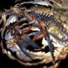ザ・ハングドマン アーカルム石 グラブル スマホ 攻略 ゲーム カイム 01